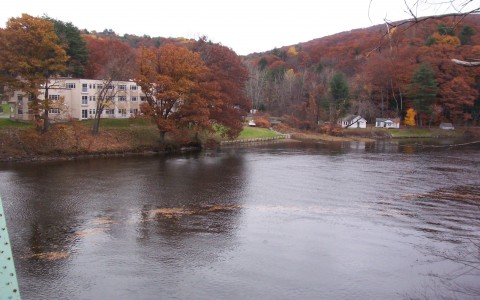 view of river and trees with orange and red leaves