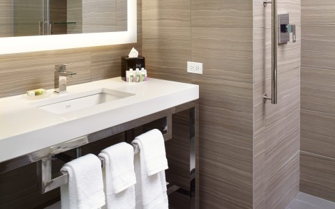 guest room bathroom with shower grab bar