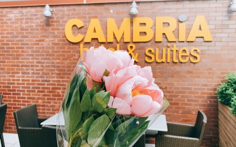 pink flowers being held in front of cambria sign on brick wall